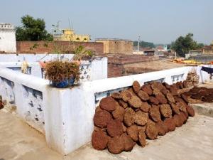 Les Dung Patties, galettes de bouse séchées utilisées comme combustible.